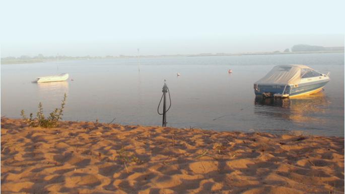 Harrier Sand
